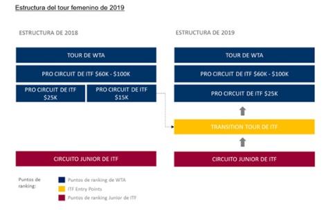 WTA estruct 2019